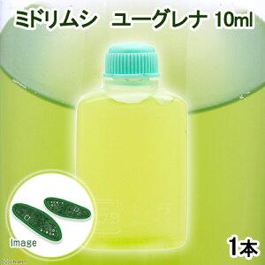 (生餌)ミドリムシユーグレナ10ml(1本)北海道航空便要保温