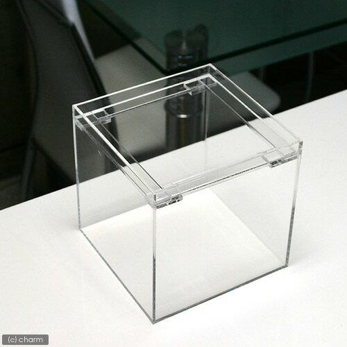 アクリル水槽(サイズ:15×15×15cm 板厚:3×3×3mm)フランジ 15cm水槽