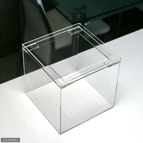 アクリル水槽(サイズ:20×20×20cm 板厚:4×4×4mm)フランジ 20cm水槽