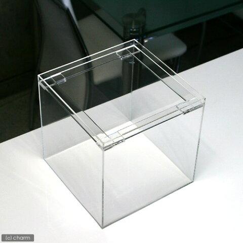 アクリル水槽(サイズ:20×20×20cm 板厚:4×4×4mm)フランジ 20cm水槽 関東当日便
