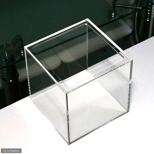 アクリル水槽(サイズ:20×20×20cm 板厚:5×5×4mm)天板くりぬき 20cm水槽