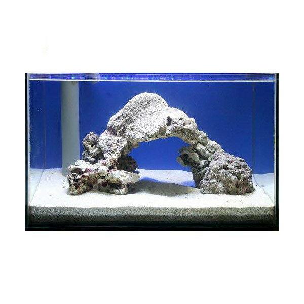 (海水魚)ライブロック 60cm水槽用アーチセット(形状お任せ)