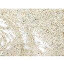海水水槽の立ち上げに。水洗い不要!(海水)Bact Sand(ばくと さんど)スモール1リットル ...