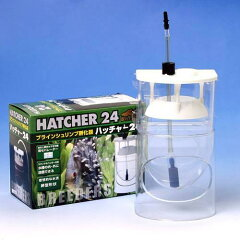 ブラインシュリンプ孵化器 ハッチャー24 2 ブリーダーズ 関東当日便