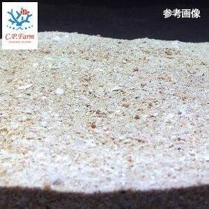 C.P.Farm直送(海水魚サンゴ砂)ライブアラゴナイトサンド3kg(約2.4L)(0.12個口相当)海水用品底砂別途送料
