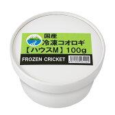 冷凍★イエコM 100g 月夜野ファーム 冷凍コオロギ 国産 別途クール手数料 常温商品同梱不可