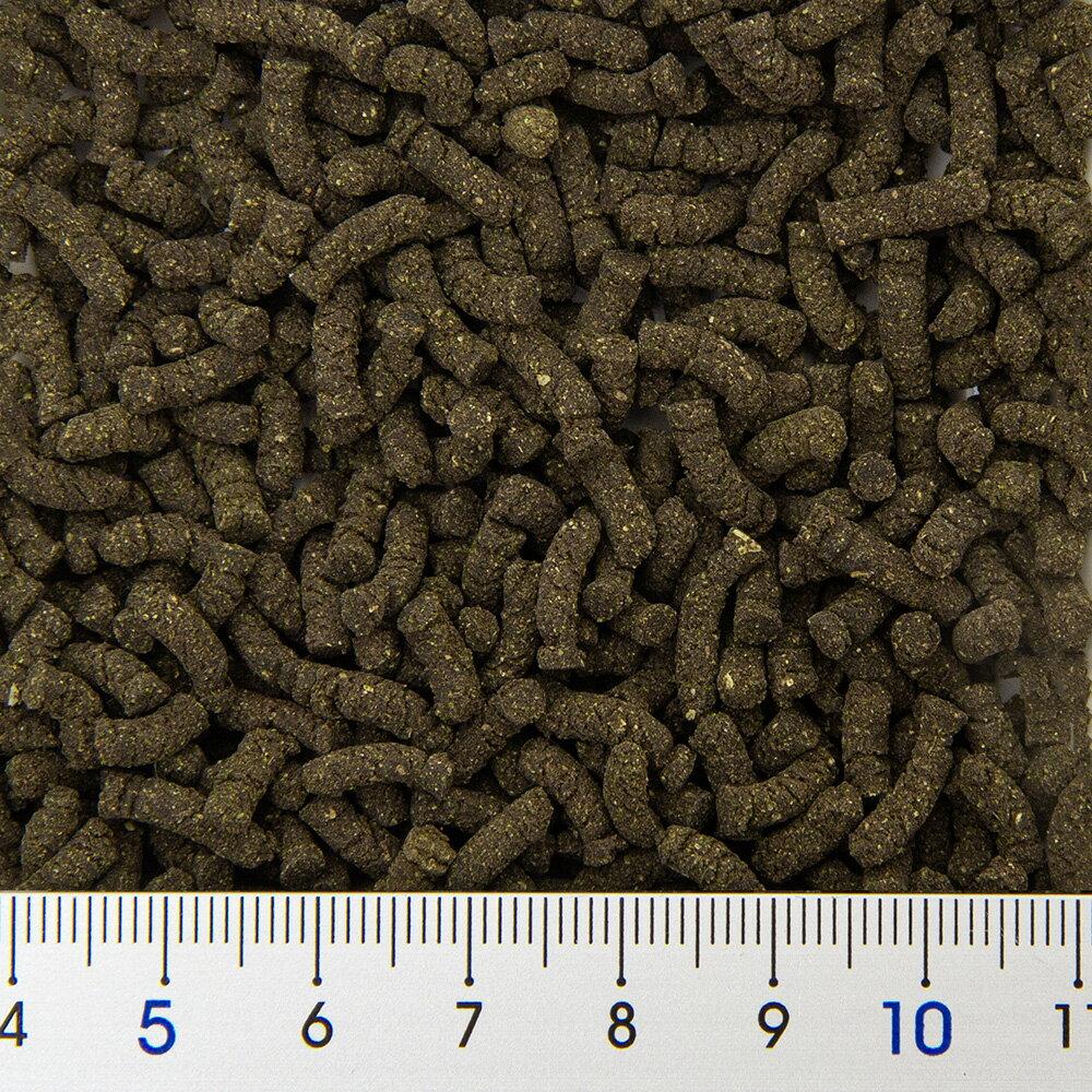 EbitaBreedエビタブリードほうれん草含有飼料SpinachTabスピナッチタブ50g関東当日便