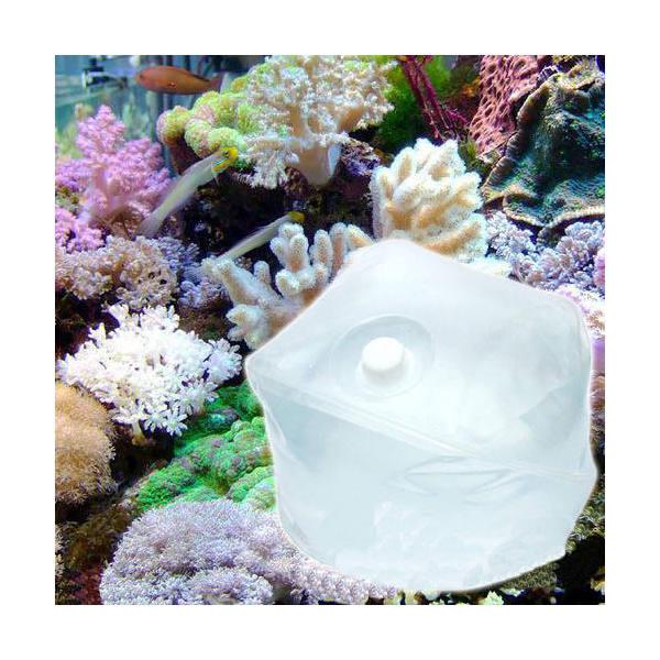 (海水魚)足し水くん テナーボトル 天然海水(海洋深層水) 80リットル 同梱不可・航空便不可 送料無料
