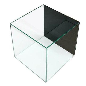 クリスタルキューブ300(30×30×30cm)バックスクリーン(ジェットブラック)貼付済み 30cm水槽 お一人様2点限り 関東当日便