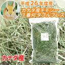 平成26年度産 カナダ産チモシー 1番刈 ダブルプレス(チャック袋) 500g 牧草 うさぎ …