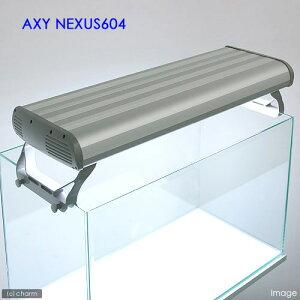 圧倒的な照度!AXY NEXUS 604 (アクシーネクサス604)【関東当日便可能】