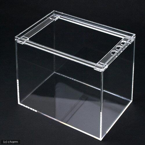 アクリル水槽 ラクシス No.10 (30×20×25cm)30cm水槽