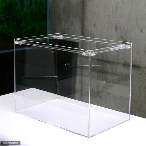 アクリル水槽 ラクシス No.27 (40×25×30cm)40cm水槽