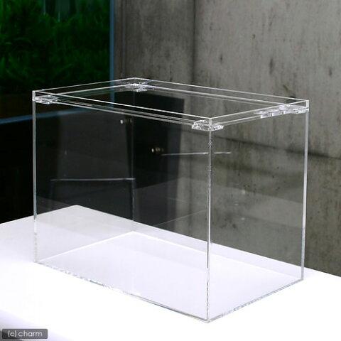 アクリル水槽 ラクシス No.27 (40×25×30cm)40cm水槽 沖縄別途送料 関東当日便