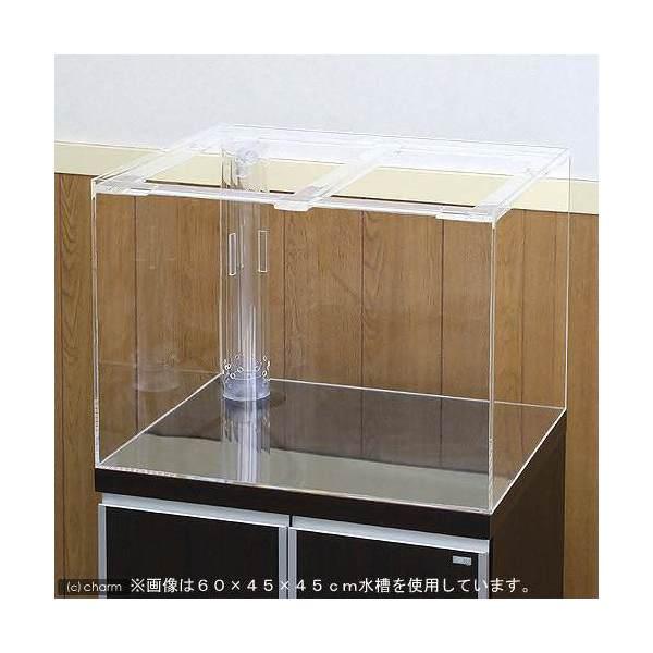 アクリル水槽 OF三重管付(サイズ:120×45×45cm)