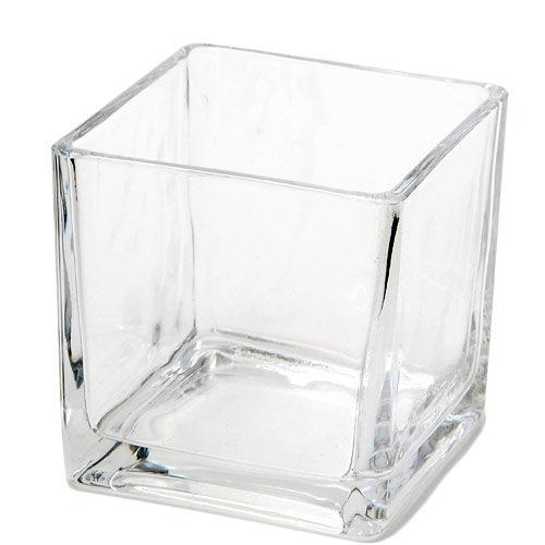 ガラスベース ニューブロックL エアプランツ 多肉植物 ティランジア ガラス