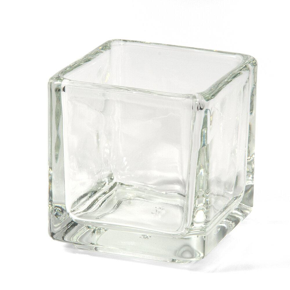 ガラスベース ブロックグラス S エアプランツ 多肉植物 ティランジア ガラス