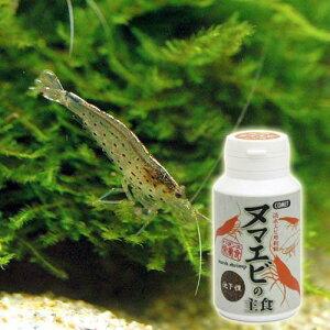 淡水エビ用飼料!コメット ヌマエビの主食 沈下性 40g 関東当日便