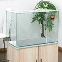 GEX グラステリア600水槽 (60×30×40) 60cm水槽(単体) ジェックス お一人様1点 ...