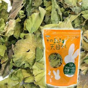 自然のまま!栄養満点!そのまんま天日干しブロッコリーの葉 (30g内外) うさぎ おやつ 関...