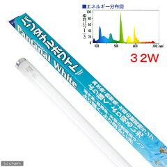 より強く、より明るい光!交換球 パンタナルホワイト 32W 水槽用照明・ライト 関東当日便