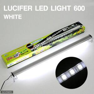 20W蛍光灯ランプの1.5倍の明るさルシファ LEDライト600 ホワイト【関東当日便】