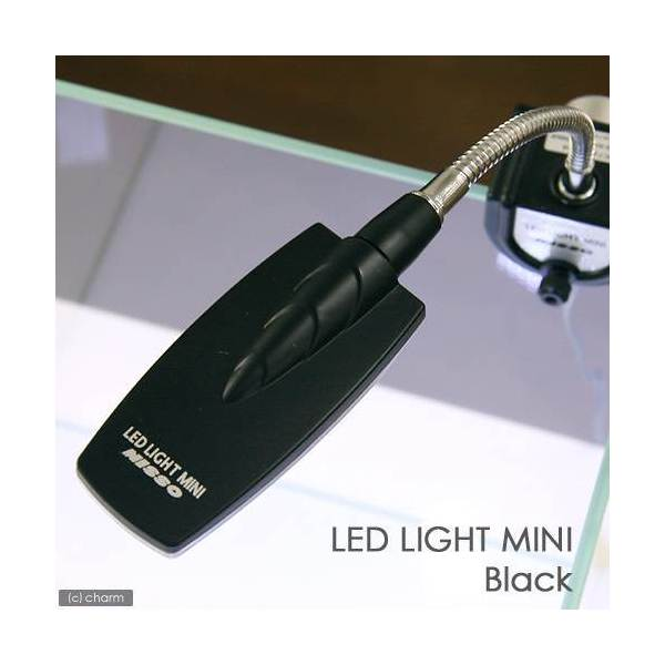 ニッソー LEDライトミニ ブラック 訳あり