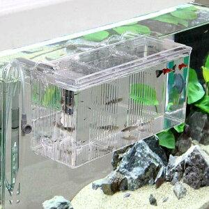 メイン水槽内を広く使える外掛式外掛式産卵飼育ボックス サテライト Lサイズ【関東当日便】