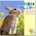 かわいいうさ写真が満載!うさぎと暮らすカレンダー 2011(壁掛け) 【あす楽対応_関東】