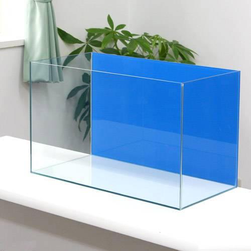 バックスクリーン貼付済 アクアブルー オールガラス60cm水槽 アクロ60N(60×30×36cm)