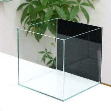 バックスクリーン貼付済 ジェットブラック オールガラス25cm水槽 アクロ25N(25×25×25cm)(単体) お一人様2点限り 関東当日便