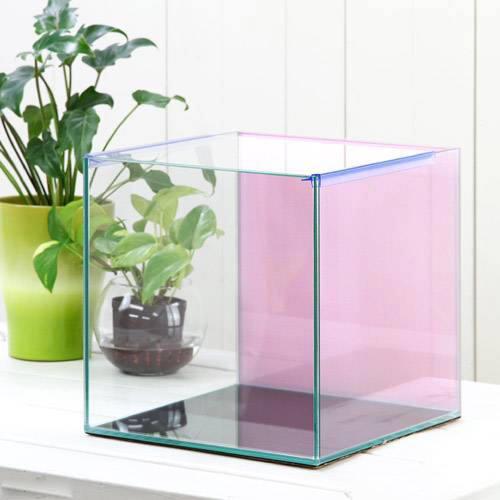 バックスクリーン貼付済 チェリーピンク オールガラス27cm水槽 アクロ27N(27×27×27cm)