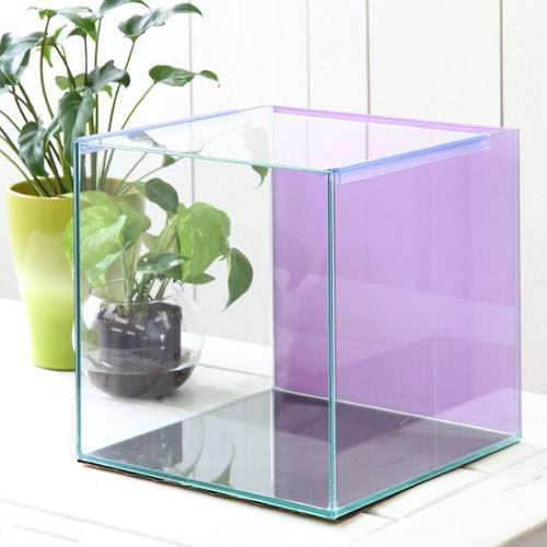 バックスクリーン貼付済 ライラック オールガラス27cm水槽 アクロ27N(27×27×27cm)