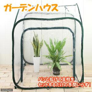 簡単設置!あったか温室!ガーデンハウス L【関東当日便】