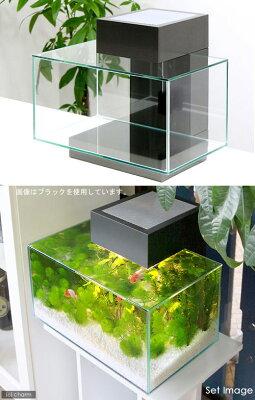 水景を彩やかに切り出す新構造!☆グラステリア エッジ シルバー(43.0×26.0×25.5cm)●...