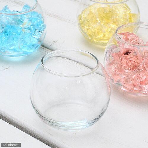 ガラスベース バブルボール SSS エアプランツ 多肉植物 ティランジア ガラス