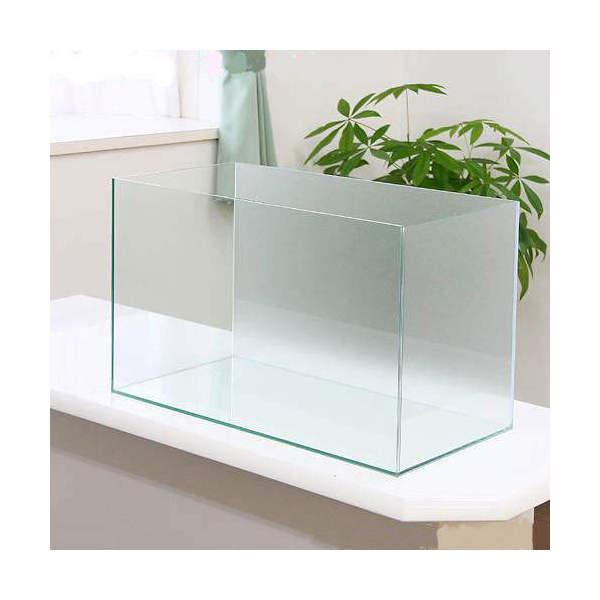 バックスクリーン貼付済 エーハイム EJ-60 60cm水槽 サンド(60×30×36cm)