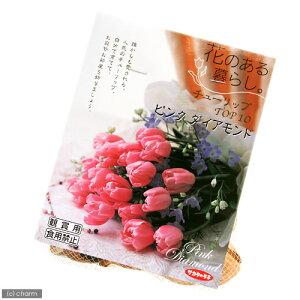 人気品種!(観葉)チューリップ球根「花のある暮らし。TOP10」シリーズ 〜ピンク ダイアモン...