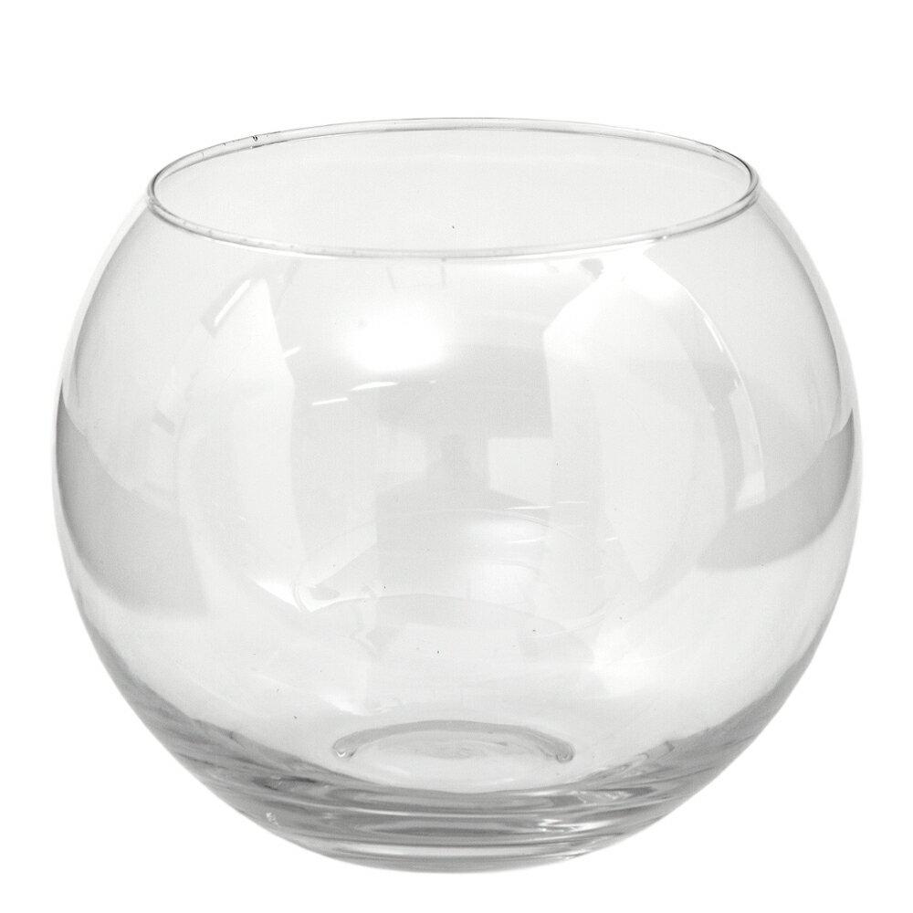 ガラスベース フローラボール L 18cm エアプランツ 多肉植物 ティランジア ガラス