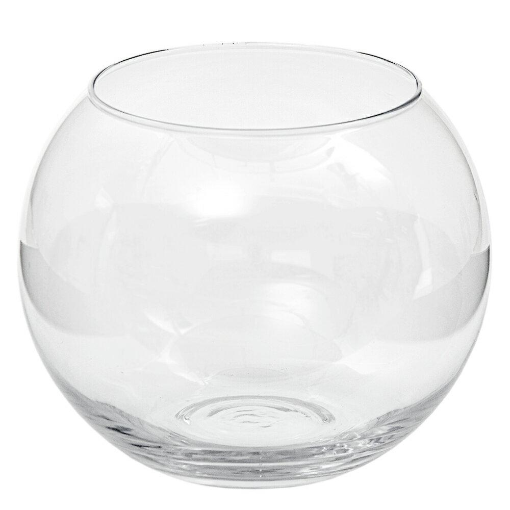ガラスベース フローラボール XL 24cm エアプランツ 多肉植物 ティランジア ガラス