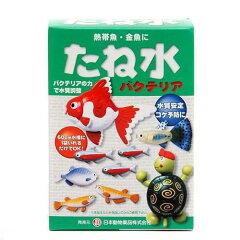 ニチドウ たね水 50mL 光合成細菌 バクテリア 熱帯魚 観賞魚 関東当日便