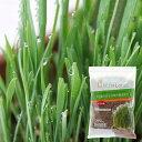 ペットグラス栽培に最適!犬と猫が好きな草の栽培用土 3L 猫草 関東当日便