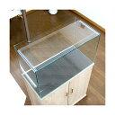 charm 楽天市場店で買える「ガラスフタ オールガラス水槽アクロ60用(幅58.3×奥行24cm) 1枚 関東当日便」の画像です。価格は416円になります。