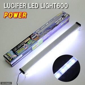 20W蛍光灯ランプ×3灯なみの明るさ!ルシファ LEDライト600 パワー 60cm水槽用照明・LEDライ...