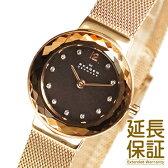 【レビュー記入確認後1年保証】スカーゲン 腕時計 SKAGEN 時計 並行輸入品 456SRR1 レディース STEEL スチール
