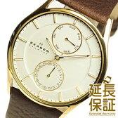 【レビュー記入確認後1年保証】スカーゲン 腕時計 SKAGEN 時計 並行輸入品 SKW6066 メンズ