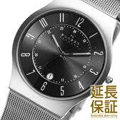 【レビュー記入確認後1年保証】スカーゲン 腕時計 SKAGEN 時計 並行輸入品 233XLTTM メンズ 男 チタニウム