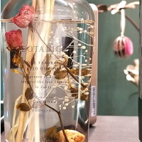 ハーバリウムディフューザー2BOTANICAボタニカ170mlローズシトラスベリーハーバル全4種ルームフレグランスハーバリウムディフューザーインテリア芳香剤かわいい雑貨アロマおしゃれギフトプレゼント誕生日バレンタインホワイトデー