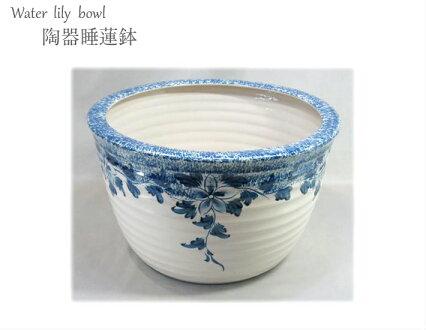 陶器睡蓮鉢2点セット