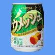 チョーヤ ウメッシュ プレーンソーダ250mlケース(24本入り)